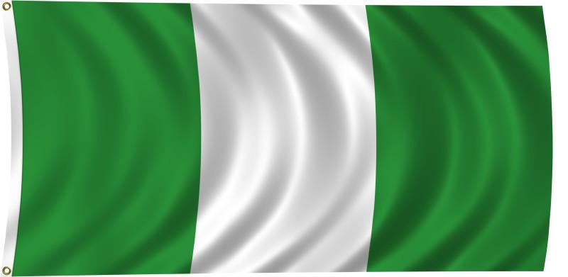 В Нигерии военный самолет по ошибке разбомбил беженцев, погибли более ста человек