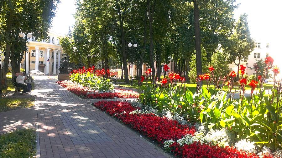 Картинки по запросу Воронеж лето