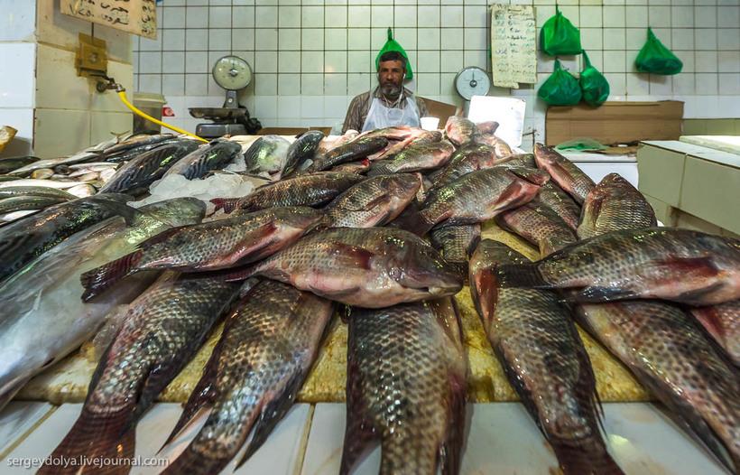 24 Путешественник показал, как и чем торгуют на рынке в Кувейте