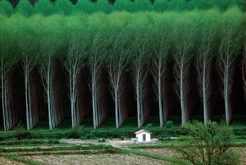 10 реальных снимков о нереальном совершенстве нашего мира, которое мы не замечаем
