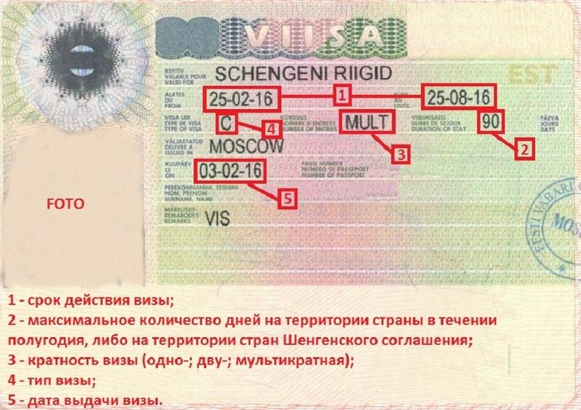 Как самому сделать для визы