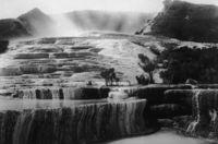 Найдено «восьмое чудо света», потерянное в Новой Зеландии более ста лет назад