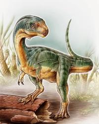 Как хищные динозавры превратились в травоядных
