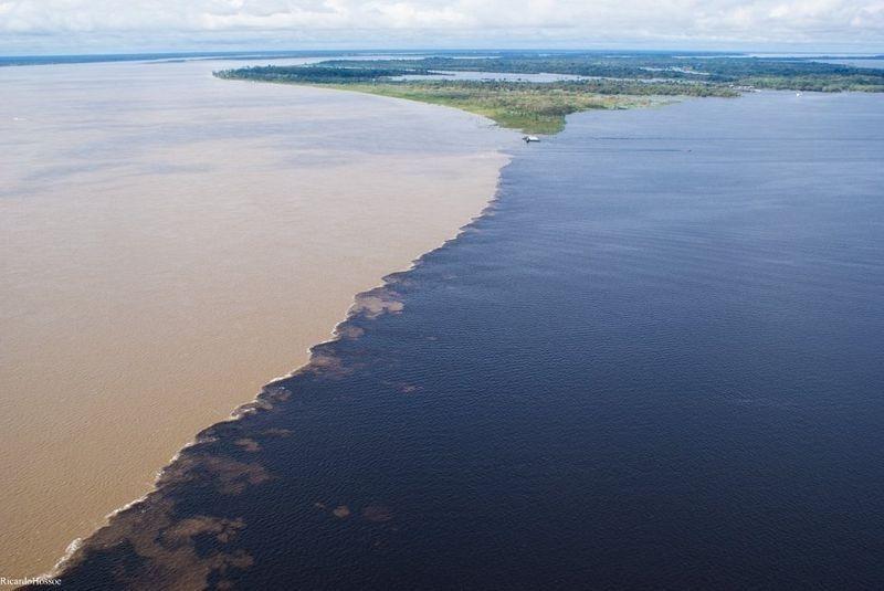 Риу-Негру: таинственная черная река Южной Америки