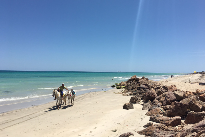 бергман биография тунис отдых остров джерба фото азумеется