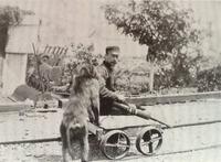 Как обычный бабуин Джек стал работать на железной дороге и направлять поезда