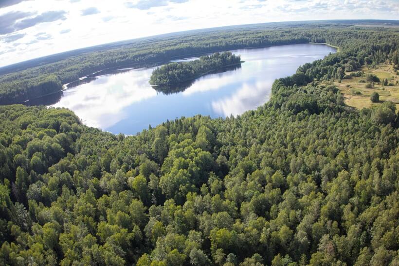 Озеро Корякино (Двинец)